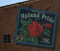 Highlight for Album: Upland Pride Mural - 9/8/03
